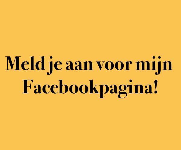 Online_bedrijfskundige_facebook_karin_hornstra